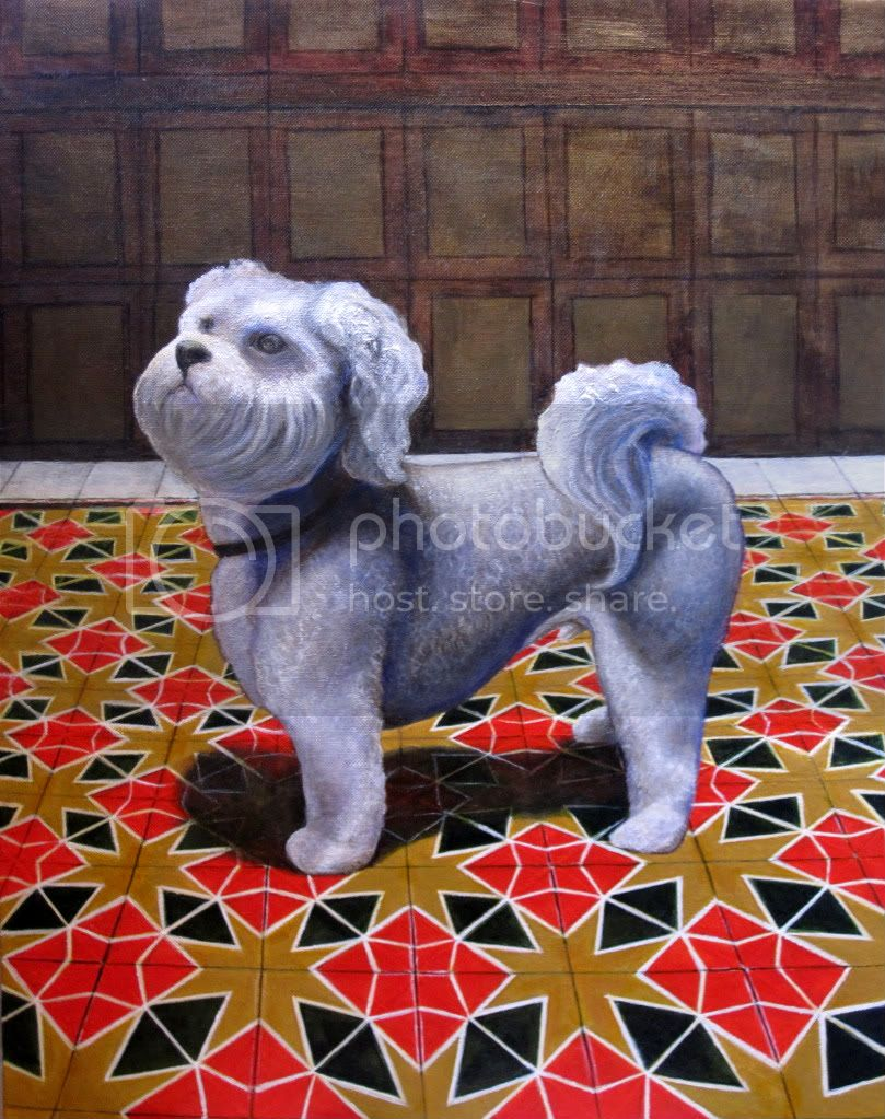 dog portrait of Havanese on Spanish floor