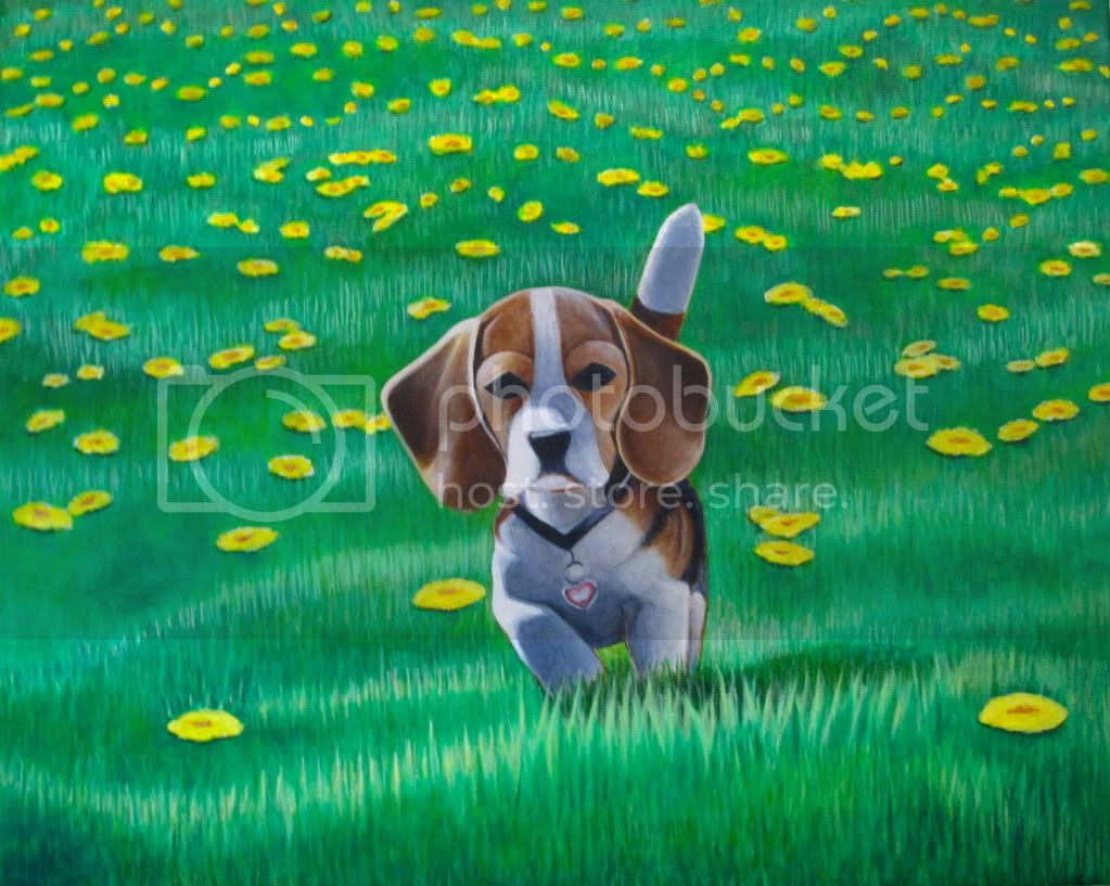 dog portrait of Beagle puppy playing in grass with yellow flowers