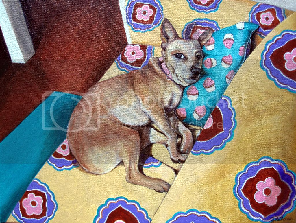 dog portrait of mix reclining on couch with colorful pattern print